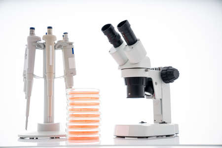 microscope, petri dishes and pipette stand by microbiological laboratory. Research body's immune response to foods to help provide guidance on what types of food for an elimination diet. 写真素材 - 154993766