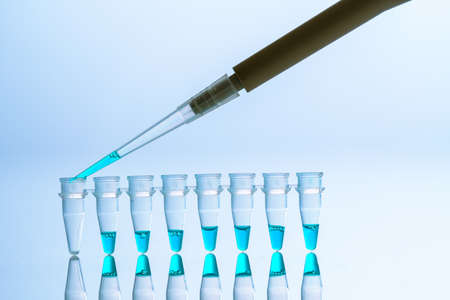 PCR Tube Strips Well and Pipette in genetic research laboratory close up 写真素材 - 154993808