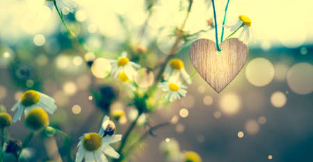 Wooden of a heart on a floral background 写真素材