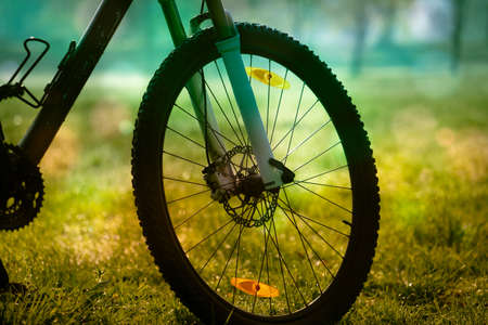 Bike in the early morning in the park 写真素材