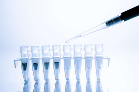 PCR Tube Strips Well and Pipette in genetic research laboratory close up
