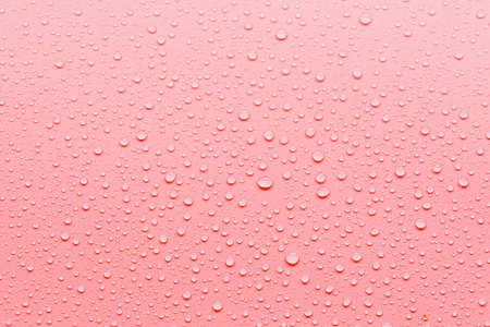 Pink abstract background with dew drops