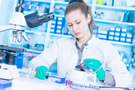 Young female laboratory assistant in laboratory analyzing environmental pollution Banque d'images