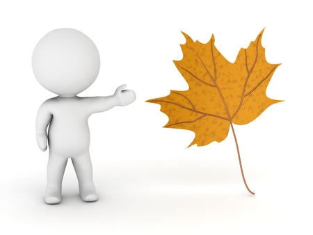 showing: 3D Character Showing an Autumn Leaf