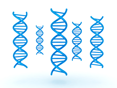 relating: 3D illustration of many DNA double helix standing vertically. Image relating to genetic medical research. Stock Photo