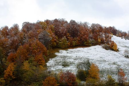 First snow over the rugged forest Stock Photo - 5813008
