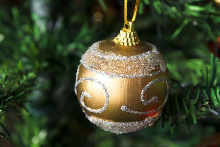 Matte golden Christmas ball hangs from pine branch. Stock Photo - 6115854