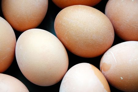 Eggs, and more eggs. Curves and shapes from the arranged chicken eggs. Stock Photo - 6146266