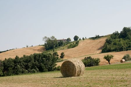 Field with bales of straw in Italy Stock Photo - 7455992