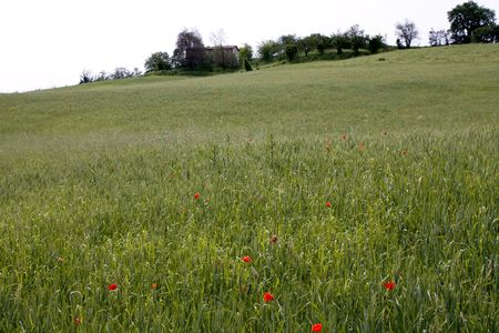Countryside near Bologna, Italy Stock Photo - 7471132