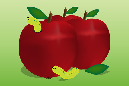 Graphic illustration of red apple fruit with worm inside. Vector