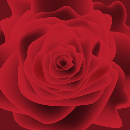 Graphic illustration of a red rose flower Vector