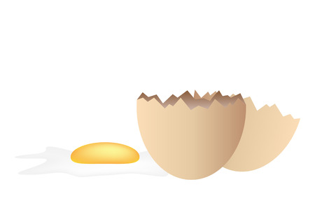raw egg: Graphic illustration of a broken egg over white background