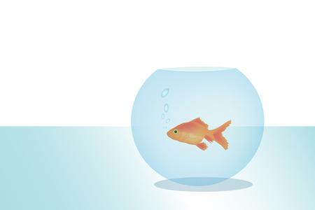 Graphic illustration of a big golden fish in small round aquarium Stock Vector - 8928524
