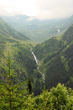 proxy falls: Waterfall in the forest in Transfagarasan, Romania