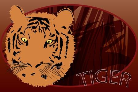panthera: Rappresentazione grafica del ritratto tiger safari in fondo