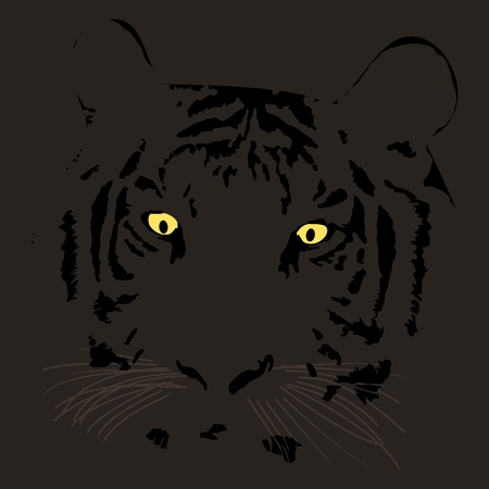 expressive: Graphic illustration of tiger face with expressive look