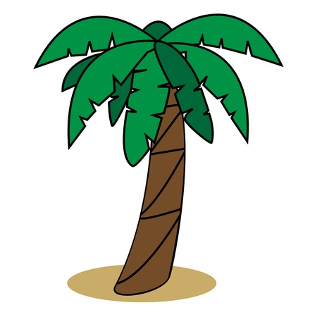 Graphic illustration of palm tree Illustration