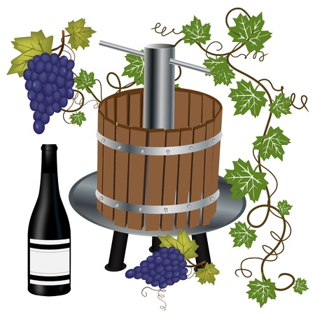 Graphic illustration of wine press with bottle and grapes Illustration