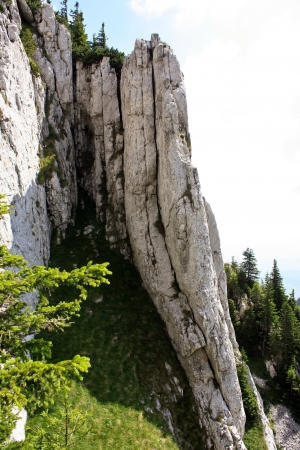 Wall of scale from Piatra Craiului national park photo