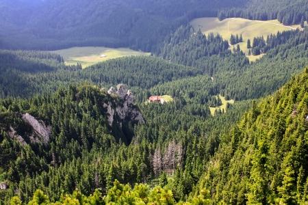 Vision to Curmatura cottage on the Turnu peak photo