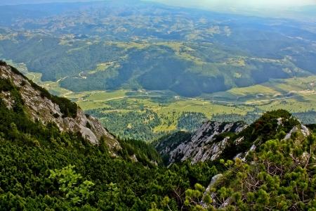 Meadows near Piatra Craiului mountains photo