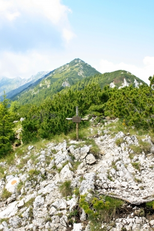 Cross at the altitude of 1923 meters in the Piatra Craiului natural reserve photo