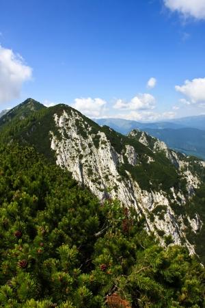 Mountain ridge from Piatra Craiului mountains, Romania photo