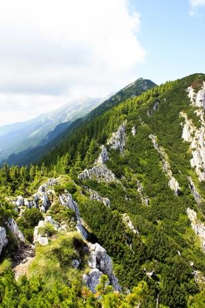 View over Piatra Craiului ridge  photo