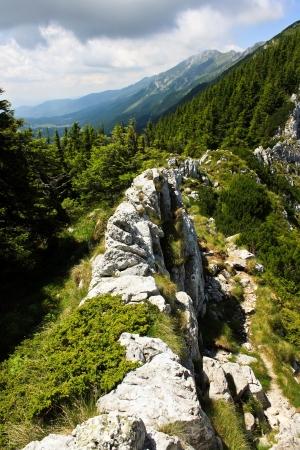 Spectacular relief from ridge of Turnu peak photo