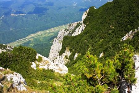 Rural zone near Piatra Craiului photo