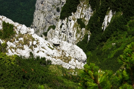 Precipice from Piatra Craiului natural reserve, Romania photo