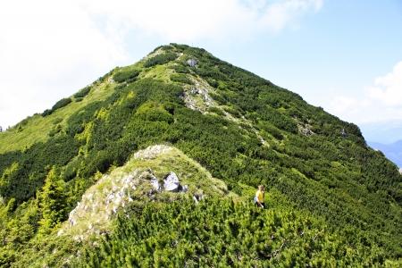 Scene with Padinei Inchise peak from Piatra Craiului natural reserve photo