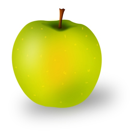 green apple isolated: Graphic illustration of fresh green apple isolated over white background Illustration