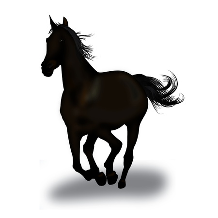 Graphic illustration of an dark horse in gallop