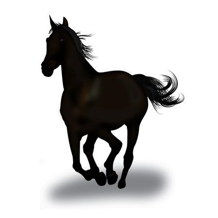 galop: Illustration graphique d'un cheval noir au galop Illustration