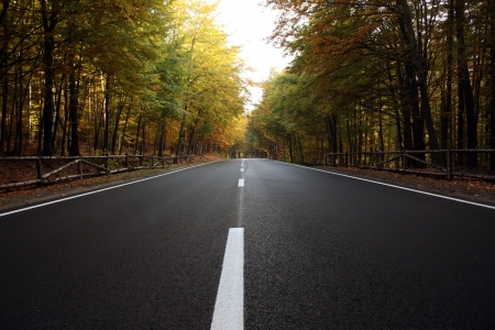 Beautiful view over a road in the woods with autumn fall colors  Road to Poiana Brasov Stock Photo - 15964023