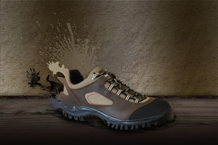 All terrain shoe over the wood floor Stock Photo - 17109318