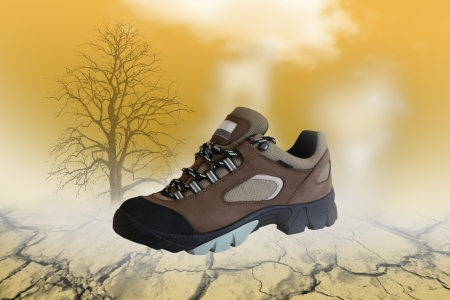 All terrain shoe in natural environment Stock Photo - 17332566