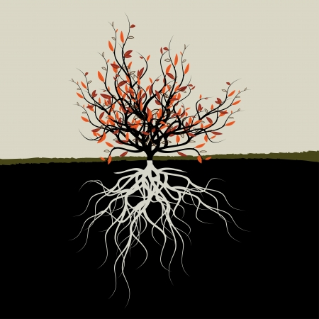 Graphic illustration of tree with roots Vector