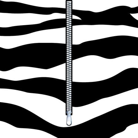 mettalic: Graphic illustration of mettalic zipper over zebra skin