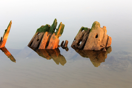 Very old pieces of wood in water