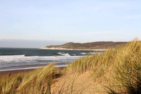 Grassy sand dunes at Woolacombe Beach, North Devon