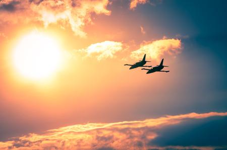 Airplanes on airshow. Aerobatic team performs flight Reklamní fotografie - 41895692