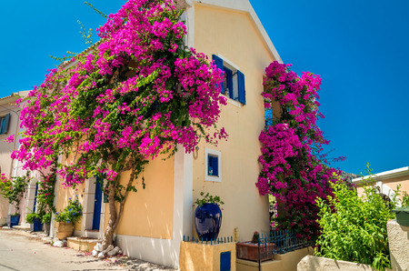 magenta flowers: Traditional greek house with flowers in Assos, Kefalonia island, Greece.. Blue door and blue window surrounded by magenta flowers. Stock Photo