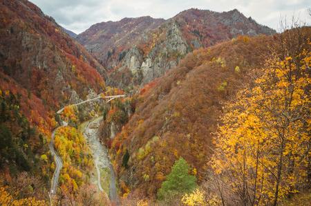 Autumn landscape. Fall in a mountain forest. Transfagarasan road in fall.