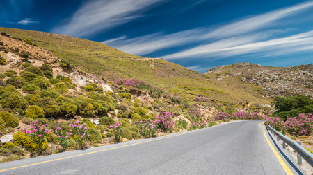 Crete island landscape, Greece. Road with plants of oleanders and flowers on the both sides Stock Photo