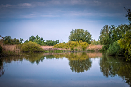 danubian: Danube Delta in Tulcea county, Romania. Canal with trees and vegetation reflected in the water. Specific landscape of this area.