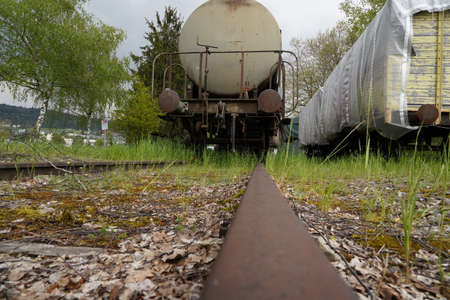 Discarded freight trains on blind railroad tracks in abandoned industrial zone. There is gras growing everywhere. Low angle view.