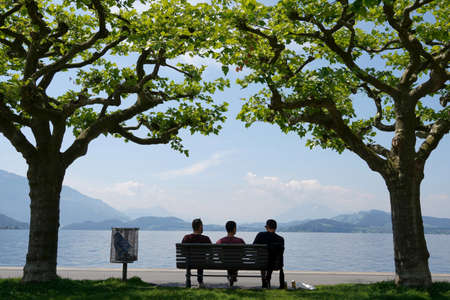 Silhouettes of three persons sitting on a bench. Scene from lake Zug in city Zug in Switzerland. The bench is placed between two plate trees. Their crowns meet above in the bench.